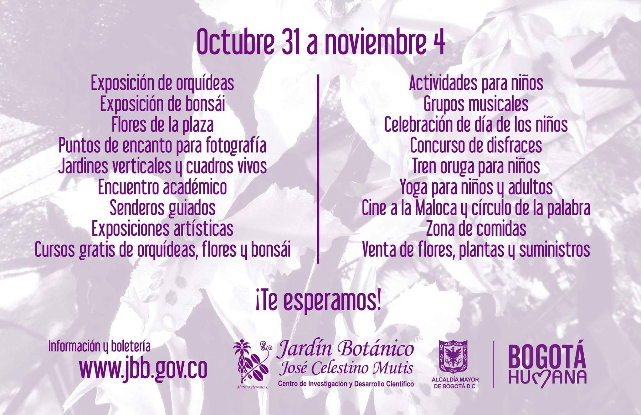 jardin_botanico_bogota_exposicio (3)
