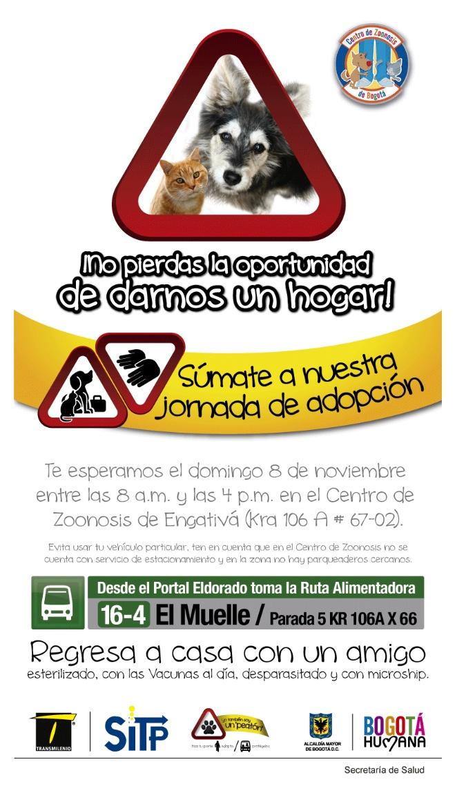 Jornada de adopción en el centro Zoonosis apoyada por el SITP