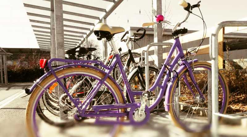 Por marchas zonas de la ciclovía pueden estar afectadas