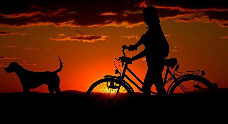Chica pasea con su perro y su bici en la noche