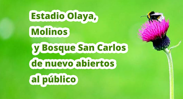 El domingo podrás disfrutar de nuevo de los parques Estadio Olaya, Molinos y Bosque San Carlos